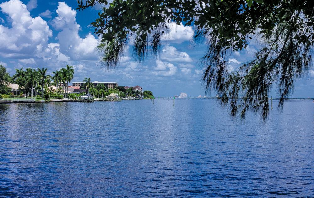 Move to Southwest Florida
